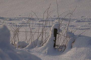 Hek in de sneeuw van