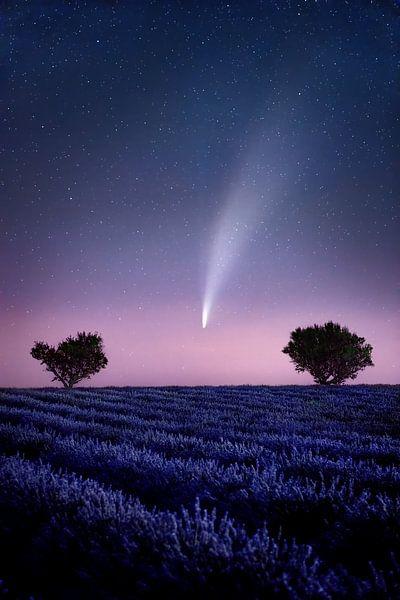 Komeet Neowise c/2020 F3 in het lavendelveld in de Provence, Frankrijk. van Voss Fine Art Fotografie