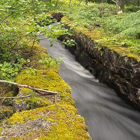 Kanaal door het bos sur Andrea Ooms