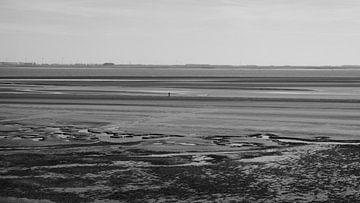 Zeeland - Ruimte van Maurice Weststrate