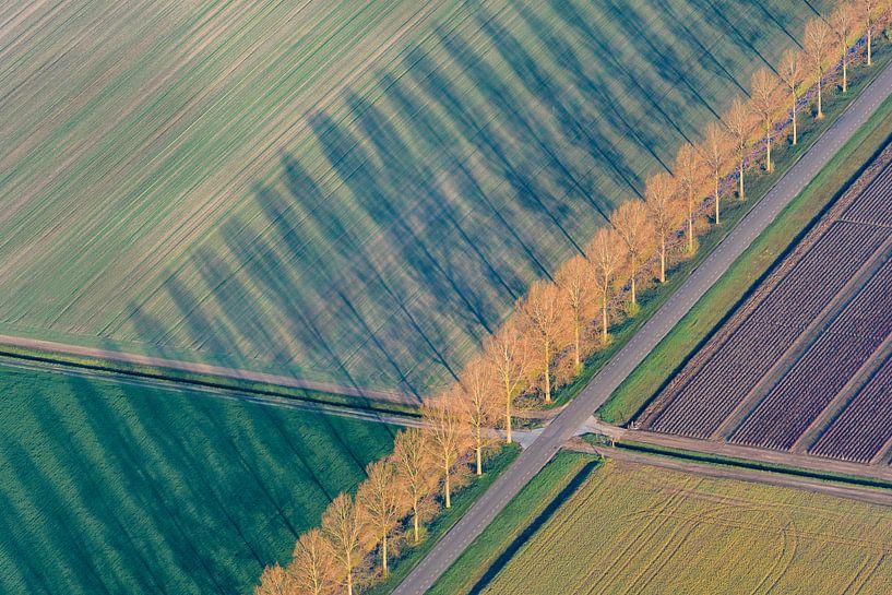 Luchtfoto van abstract landschap in Flevoland van Sjoerd van der Wal
