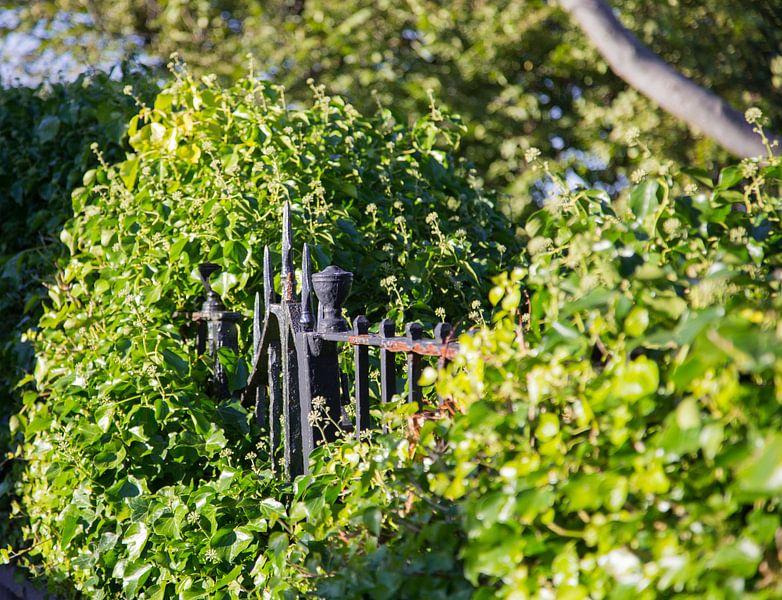 Het verborgen hek van Stephan van Krimpen