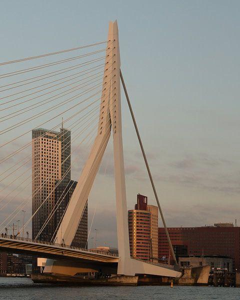 Erasmusbrug Rotterdam van Perry Dolmans