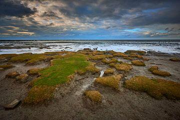 Friesisches Wattenmeer bei Ebbe von Jenco van Zalk