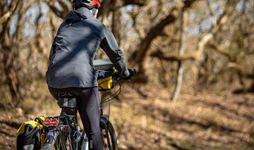 Radfahrer durch das Manteling von Walcheren von Percy's fotografie