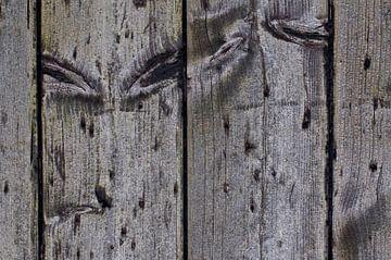 wood von Robbert goedhart