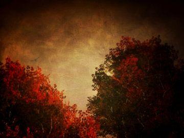 Landschap – Rode berk met getextureerde hemel van Jan Keteleer