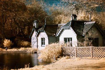 Duck Island Cottage von Helga Novelli