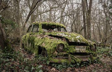 Moos-Auto Frankreich von dafne Op 't Eijnde