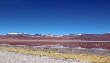 Boliviaanse hoogvlakte met flamingo's van Marieke Funke