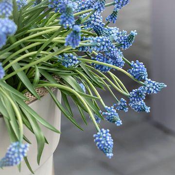 Blauwe druifjes van Jefra Creations