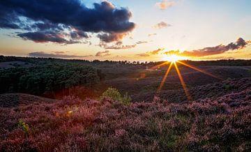 Zonsondergang over de paarse heide op de posbank van Moo pix