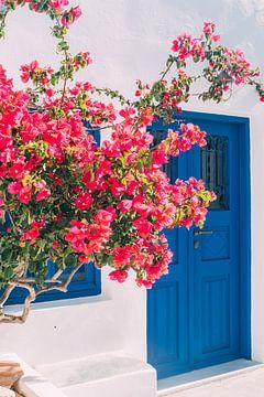 Blauwe Deur en Roze Bloemen van Patrycja Polechonska