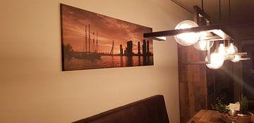 Klantfoto: Rotterdam Panorama in de ochtendzon (maas met erasmusbrug)