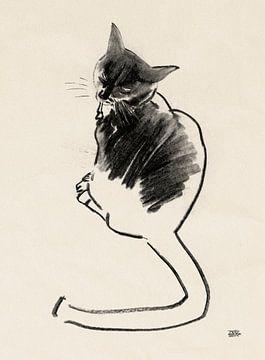 Noesje,tekening van een kat met houtskool von Pieter Hogenbirk