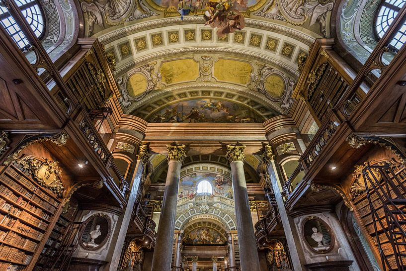 De Nationale bibliotheek van Oostenrijk van Ronne Vinkx