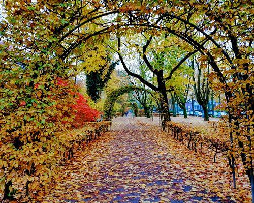 Herbst an der Bebelallee van