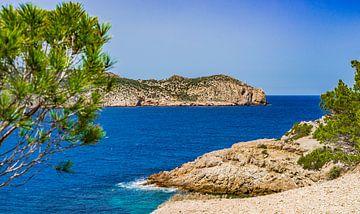 Het eiland Sa Dragonera nationaal park, aan de kust van Sant Elm Mallorca, Spanje van Alex Winter