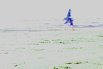 Langs het strand van Ilse Schoneveld