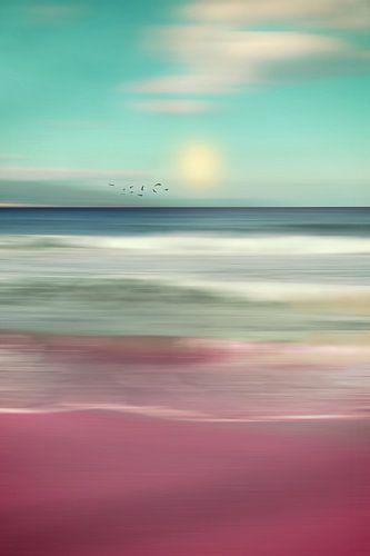 OCEAN DREAM IV-B