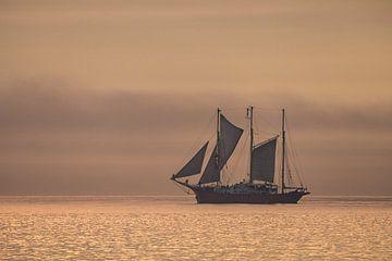 Ein Segelschiff auf der Ostsee im Sonnenuntergang von Rico Ködder
