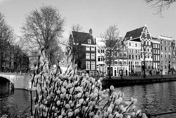 Keizersgracht Amsterdam von Marianna Pobedimova