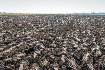 Frisch gepflügtes Feld aus niederländischem Flusslehm von Ruud Morijn