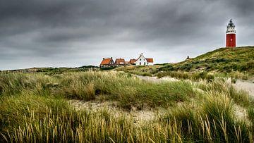 Leuchtturm Eierland auf Texel von Muriel Dorland