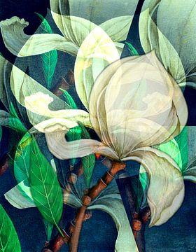 bloemenabstract van Gertrud Scheffler