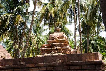 Palmen in Badami, Indien von Camille Van den Heuvel