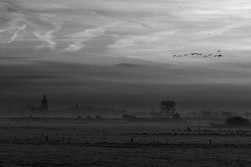Flanders fields van han Soete