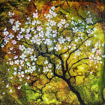 Kirschblüte von Christine Nöhmeier