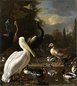 Een pelikaan en ander gevogelte bij een waterbassin, 'Het drijvend veertje' van Hollandse Meesters