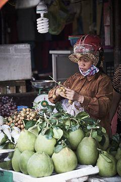 Fruitverkoopster In Vietnam van Karel Ham