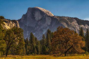 Yosemite park von Rien van Bodegom