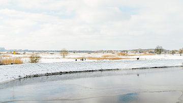 Winterlandschap III van Diane van Veen