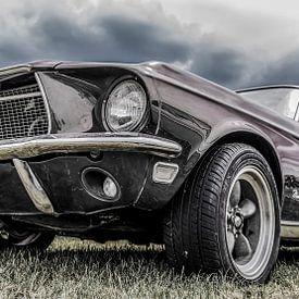 Ford Mustang,The Beast van Ans Bastiaanssen
