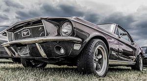 Ford Mustang,The Beast van