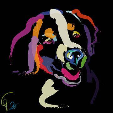 Hund Iggy färben mich Hell von Go van Kampen