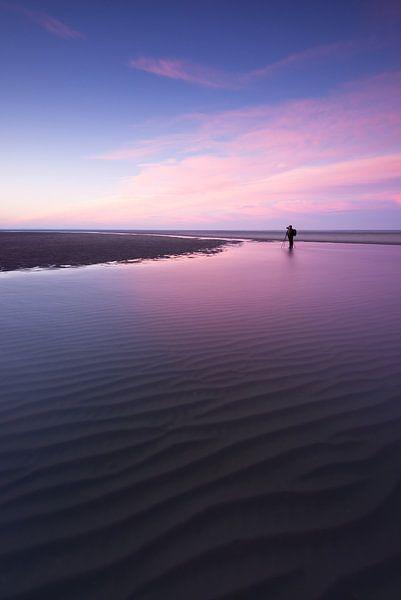 Maasvlakte 17