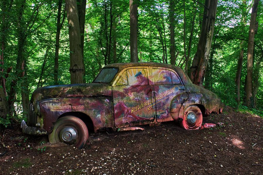 OldTimer in het bos van Vincent den Hertog