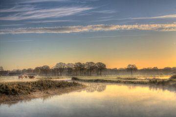 magische morgen van Lia Altink