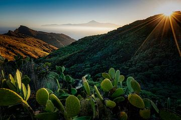 El sendero costero mas bonito van Joris Pannemans - Loris Photography