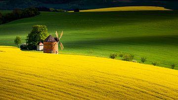 Moravie Toscane, République tchèque sur Adelheid Smitt