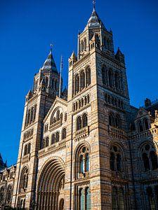 Natural History Museum in Londen van Matthijs Noordeloos