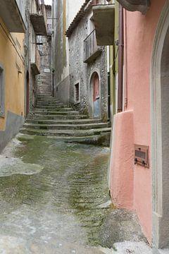 kleurig straatje van Helene de Jongh