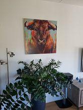 Kundenfoto: Gemälde eines Porträts eines Stiers von Liesbeth Serlie, auf alu-dibond
