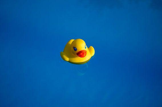 Geel rubbereendje in een blauw zwembad