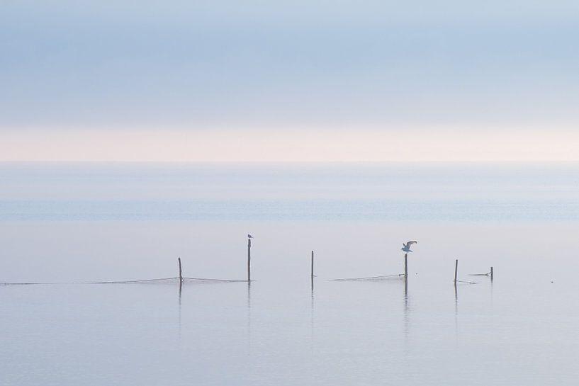 Gouwzee in de mist van Monika Wolters