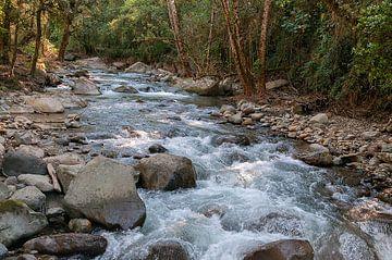 Costa Rica: Vergel de Punta Mala van Maarten Verhees